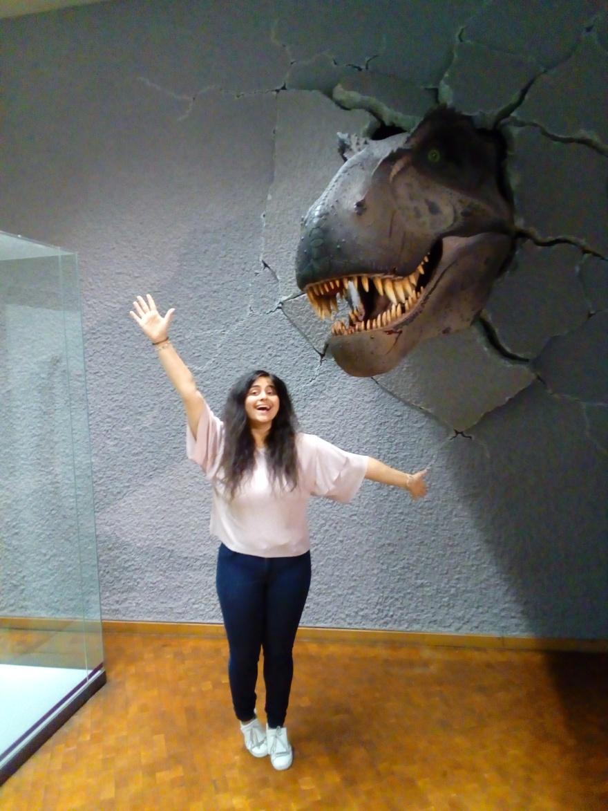 Dinosaurierkopf